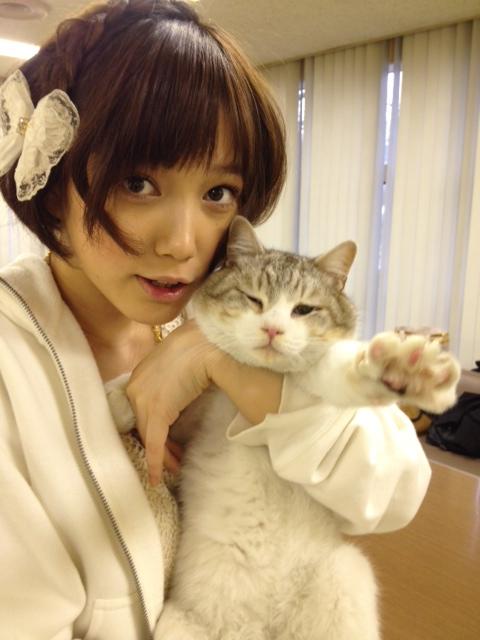 「本田翼 猫」の画像検索結果